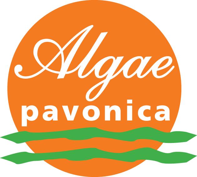 Algae Pavonica